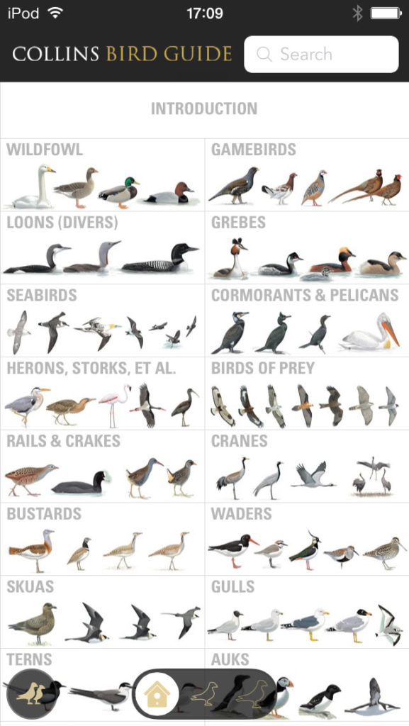 Collins Bird Guide Introduction