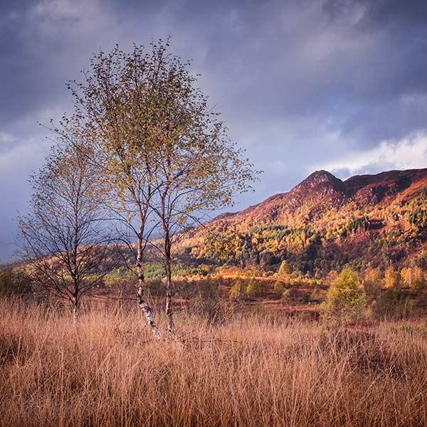 The Trossachs in Autumn